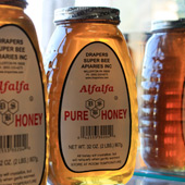 Pure Honey - York County, PA