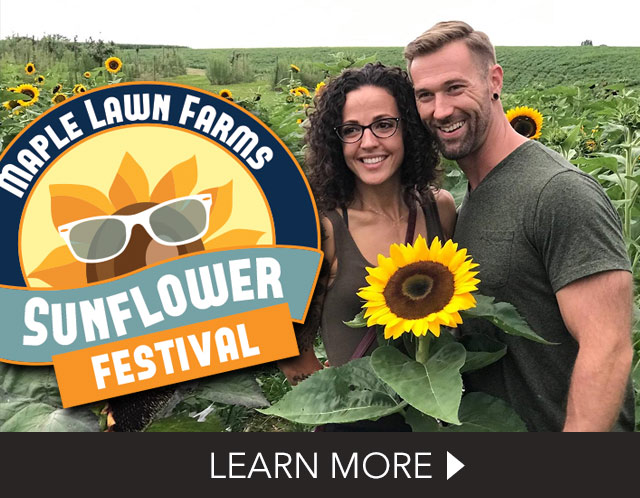 Pennsylvania Sunflower Festival